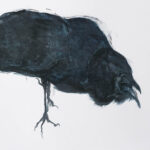 Black Crow 3. cropped from original.  Oil on cartridge paper